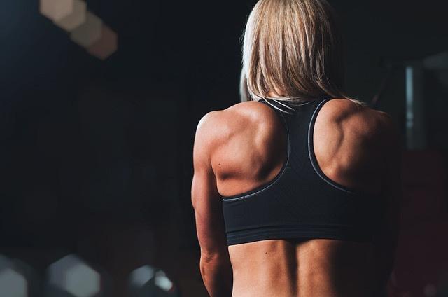 A mély hátizmok szerepe nélkülözhetetlen nemcsak a szép tartáshoz, de az egészséges gerinchez is. csak nagyon óvatosan szabad edzeni a mély hátizmokat.
